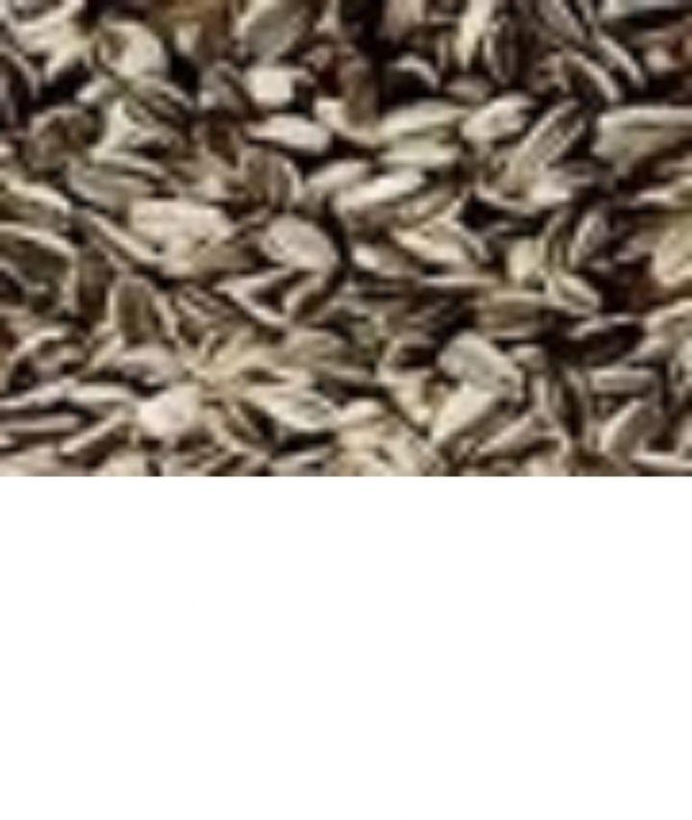 <p>GIRASOLE STRIATO&nbsp;</p><p>Seme oleoso particolarmente nutriente e gradito dai pappagalli, ha un contenuto di carboidrati 17,8% proteine 10% grassi 26% , regolatore delle funzioni intestinali. E' infatti spesso presente nelle varie miscele. Essendo un seme oleoso si consiglia una moderata somministrazione. L'uso continuato nel tempo, dona lucentezza al piumaggio e ne aiuta il cambio nei periodi della Muta.</p>