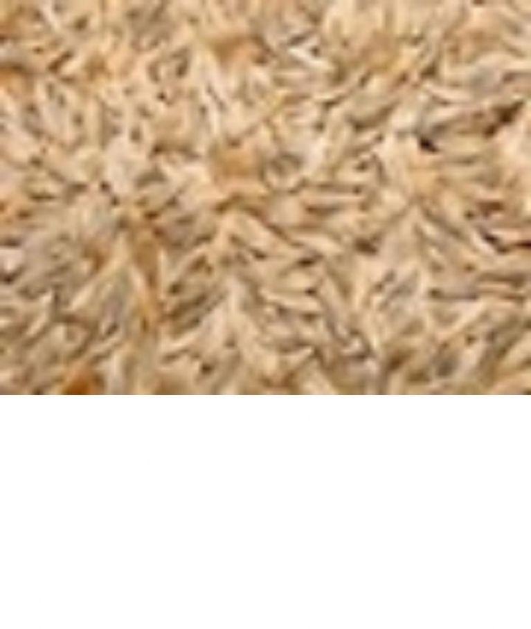 <p>LATTUGA BIANCA&nbsp;</p><p>Seme molto gradito dagli uccelli, ricco di oligoelementi, minerali e vitamine, curativo, stimola l'appetito, la digestione ed e' anche un ottimo rinfrescante.</p>